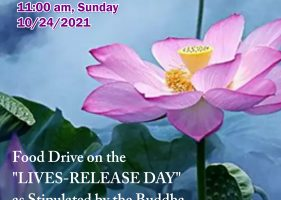 """2021-10-24 Food Drive on the """"LIVES-RELEASE DAY"""" as Stipulated by the Buddha & Beseeching Blessings Dharma Assembly on the Birthday of Medicine Buddha"""